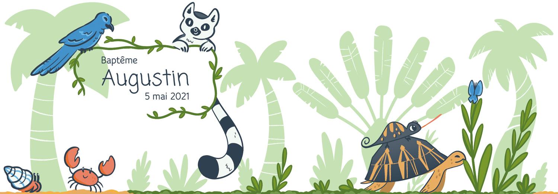 Animaux de Madagascar